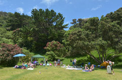Muriwai beach - New Zealand. MURIWAI, NZL - JAN 01 2015:Visitors in Muriwai beach reserve.It's a very popular beach in New Zealand known for it beauty and for royalty free stock image