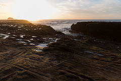 Muriwai Beach. Sunset at Muriwai Beach, New Zealand Stock Photos