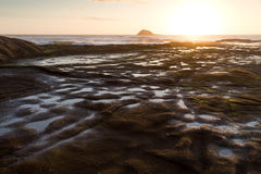 Muriwai Beach. Sunset at Muriwai Beach, New Zealand Royalty Free Stock Photo