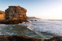 Muriwai Beach. Sunset at Muriwai Beach, New Zealand Royalty Free Stock Photos