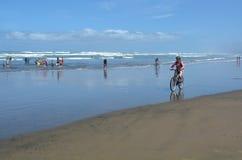 Muriwai plaża - Nowa Zelandia Zdjęcie Royalty Free