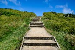 Muriwai Regionaal Park, Nieuw Zeeland royalty-vrije stock afbeeldingen