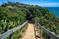 Muriwai Regionaal Park, Nieuw Zeeland Royalty-vrije Stock Foto