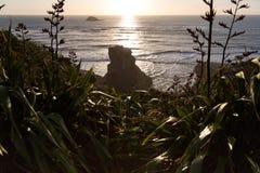 Muriwai Strand Stockbild