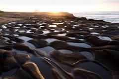Muriwai Strand Stockbilder