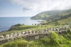 Murlough Beach; County Antrim royalty free stock images