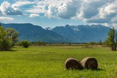 Murnauer Moos with a view to the mountains Stock Photos