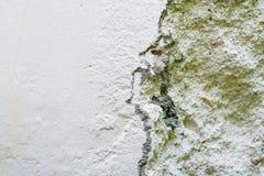 Muro de cemento. imágenes de archivo libres de regalías