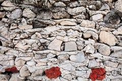 Muro de cemento agrietado con los elementos de las conchas marinas Imagen de archivo libre de regalías