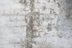 Muro de cemento pulido gris imágenes de archivo libres de regalías