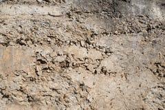 Muro de cemento texturizado áspero con los escombros que resaltan para un fondo o una textura fotografía de archivo libre de regalías