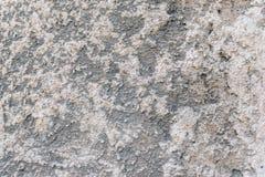 Muro de cemento viejo Imágenes de archivo libres de regalías