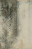 Muro de cimento Fotografia de Stock