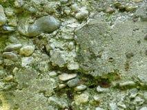 Muro de cimento arruinado muito velho do cimento A alvenaria rachada cobriu com o musgo fotografia de stock