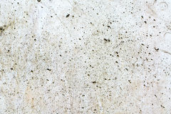 Muro de cimento branco 9 fotos de stock royalty free