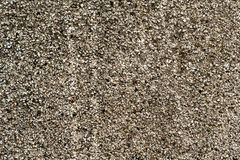 Muro de cimento cinzento 3 Fotografia de Stock