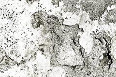 Muro de cimento rústico Imagem de Stock Royalty Free