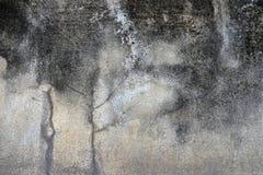 Muro de cimento sujo e da quebra com mancha do líquene e do molde, tex Imagem de Stock