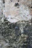 Muro de cimento Textured ilustração stock