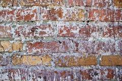 Muro de cimento velho Fotos de Stock Royalty Free