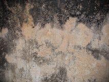 Muro de cimento velho Imagens de Stock Royalty Free