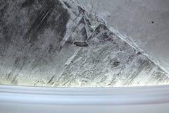 Muro di cemento e cornicione Fotografia Stock
