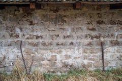 Muro di cemento ed erba del mattone Fotografia Stock Libera da Diritti
