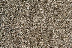 Muro di cemento grigio 3 Fotografia Stock