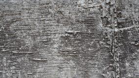 Muro di cemento grigio Fotografia Stock Libera da Diritti