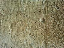 Muro di cemento grigio Immagini Stock Libere da Diritti