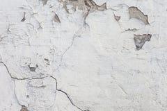 Muro di cemento grigio con il lerciume per fondo astratto fotografia stock