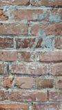 Muro di mattoni Immagini Stock