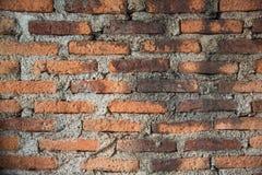 Muro di mattoni Immagine Stock
