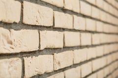 Muro di mattoni beige di massima Fotografia Stock