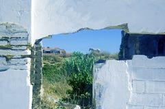 Muro di mattoni bianco con il cavallo bianco sui precedenti fotografia stock libera da diritti