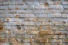 Muro di mattoni di cento anni Fotografia Stock Libera da Diritti