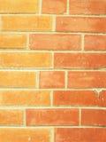 Muro di mattoni con due colori differenti dei mattoni Fotografia Stock Libera da Diritti