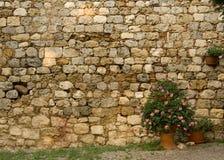 Muro di mattoni con i fiori Fotografie Stock Libere da Diritti