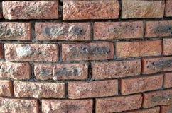 Muro di mattoni curvo Immagini Stock