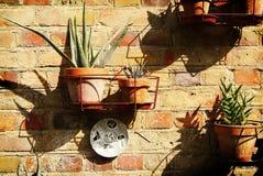 Muro di mattoni decorato Fotografie Stock