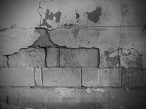 Muro di mattoni del cemento con pittura Fotografia Stock Libera da Diritti