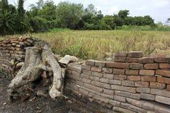 Muro di mattoni di Anciant nel campo verde Fotografie Stock Libere da Diritti