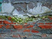Muro di mattoni di decomposizione variopinto Immagini Stock Libere da Diritti
