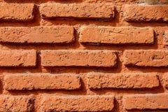 Muro di mattoni di orango Fotografia Stock Libera da Diritti