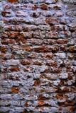 Muro di mattoni imbiancato Immagine Stock