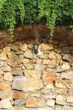 Muro di mattoni, lampada e pianta Fotografia Stock