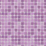 Muro di mattoni lilla 2 Immagine Stock Libera da Diritti