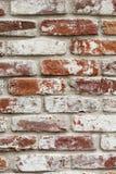 Muro di mattoni rosso con pittura bianca Fotografie Stock