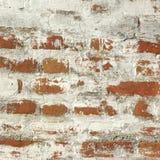 Muro di mattoni rosso ruvido con il fondo bianco della struttura del gesso Fotografie Stock