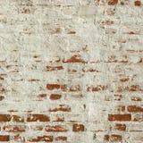 Muro di mattoni rosso ruvido con il fondo bianco della struttura del gesso Immagine Stock Libera da Diritti